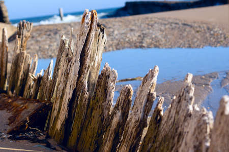 Rotten logs of old harbour . Abandoned fishing berth Stok Fotoğraf - 155215445