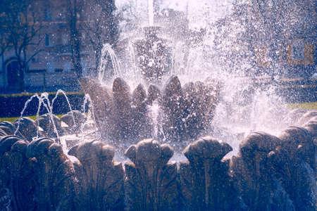 Birdbath Fountain with splashing in the sunny day