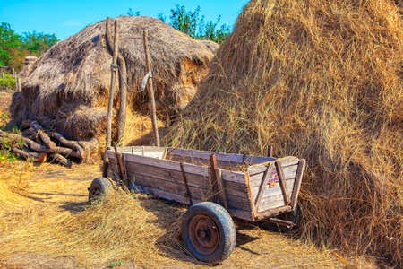 Rustic scene with carriage and haystacks . Feed storage