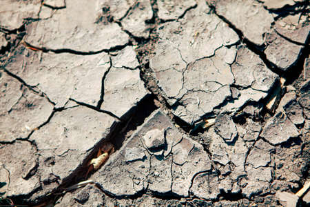 drought cracked soil in the hot summer Stok Fotoğraf