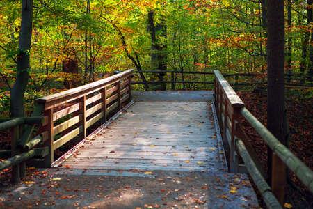 Wooden footbridge in autumn park . Walking in fall season nature Stockfoto