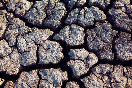 drought soil with deep cracks