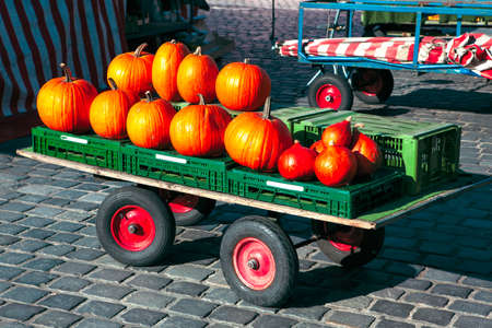 Pile of pumpkins in carriage at the market place