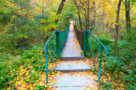 Footbridge in the autumn park  . Suspended Wooden Bridge for Walking