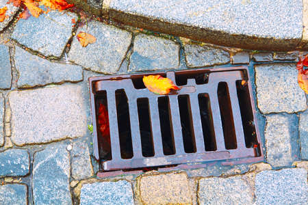 Street drain grate in the autumn . Colorful leaves on the pavement