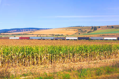 landscape with train at agricultural field . Railroad transportation with wagons Stok Fotoğraf