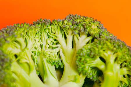 Broccoli green cabbage plant , shot in studio