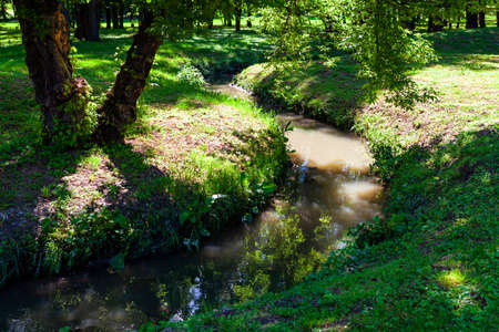 Brook in the spring park . Water stream in green parkland