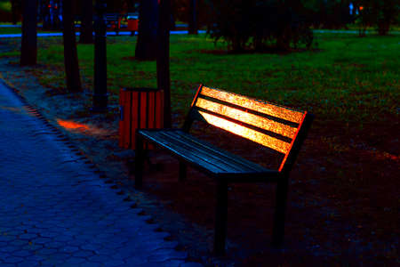 Bench in the evening park with light reflection in the painted planks . No people in the park Imagens