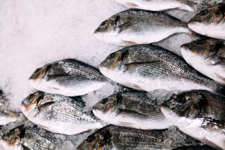 Fish on the ice in supermarket . Seafood for sale . Catch of winter fishing