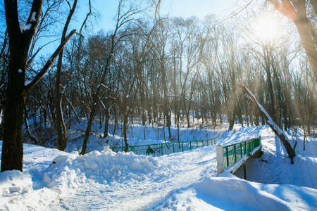 Footbridge in the winter park . Pedestrian bridge covered by snow . Sunshine in the wintertime