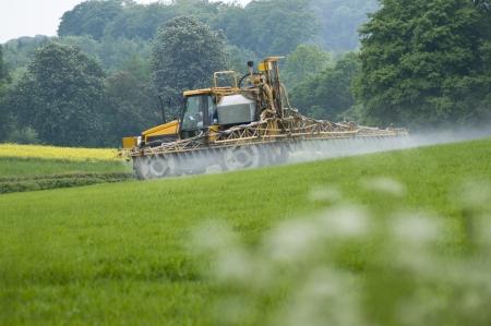 arable: tractor cropspraying green arable crops in field