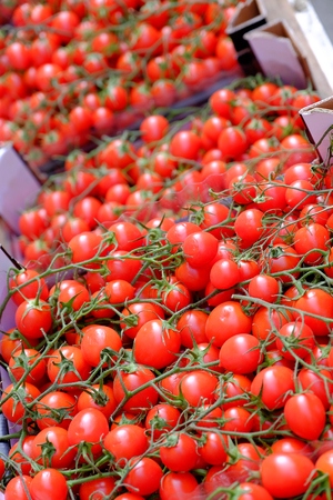 boxes of red vine tomatoes for sale in a market