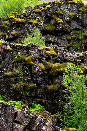 Volcanic rock strata foliage and moss in Iceland