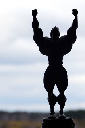 Silhouette of a sports man figure with hands up on a cloudy sky background. Conceptual. Victory over the task.