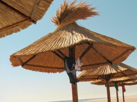 Beach umbrellas on seashore Stock Photo