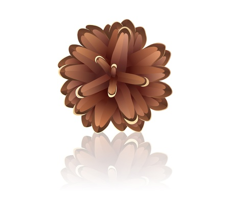 Pinecone on a white background Illustration