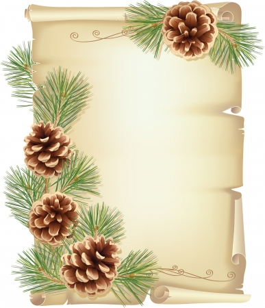 Old scroll, pine branches and cones Vector