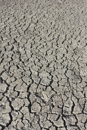 Drought, dry cracked earth, barren soil photo