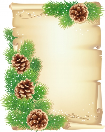 Old scroll, pine branches and cones Stock Vector - 24247005
