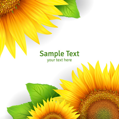 Banner, floral background or template card with sunflowers  イラスト・ベクター素材