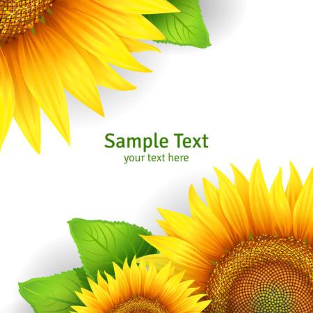 Banner, bloemen achtergrond of sjabloon kaart met zonnebloemen Stock Illustratie