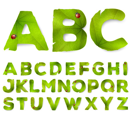 white letters: Vector alphabet letters made from green leaves, isolated on white Illustration