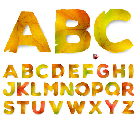 beautiful garden: Vector alphabet letters made from autumn leaves, isolated on white