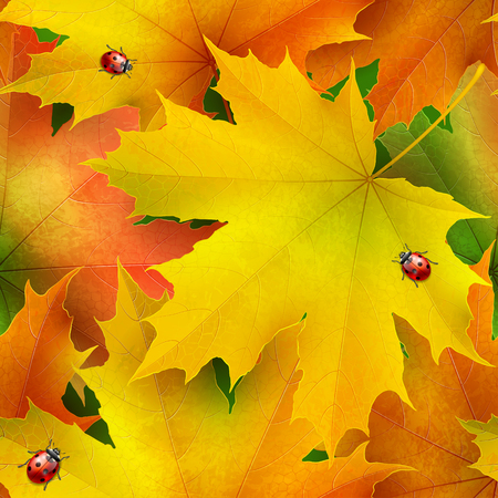 ladybird: Seamless pattern of colored autumn maple leaves and ladybirds