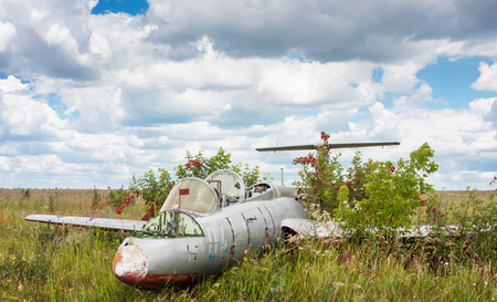 airstrip: Old aircraft in elderberry bush, Aero L-29 Delfin (Maya) czechoslovakian military jet trainer on an abandoned airfield in Ukraine
