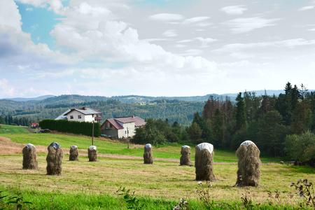 Rural Landscape with stacks of mown hay in Silesian Voivodeship in the Poland against the background of mountains Western Carpathians