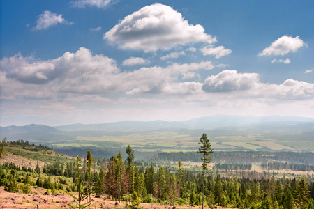 Summertime landscape with view of the Poprad River valley, mountains High Tatras, part of the Western Carpathians, Presov Region in the Slovakia
