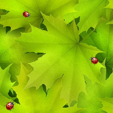 Seamless vector background -- green summer spring maple leaves and red ladybirds Illustration