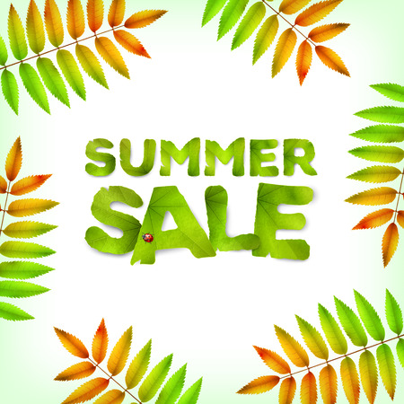 Vector summer square background, green yellow leaves and the inscription Summer Sale, made from green leaves, isolated on white background.