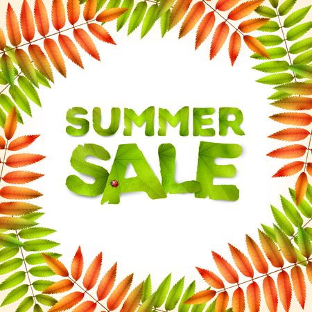 Vector summer square background, green red leaves and the inscription Summer Sale, made from green leaves, isolated on white background.