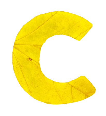 Letter C carved from the autumn leaves, isolated on white background, closeup