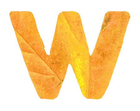 Letter W carved from the autumn leaves, isolated on white background, closeup Imagens