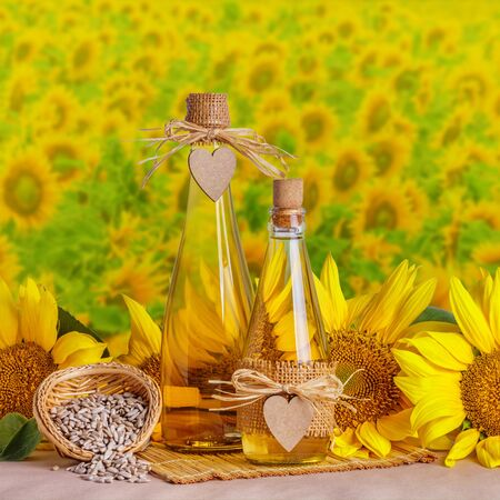 Rural still-life - sunflower oil in glass bottles against the background of sunflower field, closeup with space for text