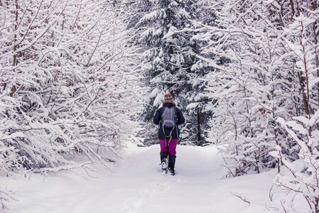 Winter landscape - view of the snowy road with a walking hiker in the winter mountain forest after snowfall Stock fotó