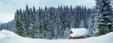 Winter landscape, banner - view of the snowy house in the winter mountain forest after snowfall Stock fotó