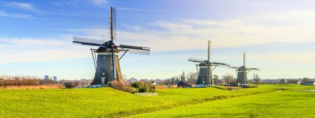 Rural landscape - view of green meadow on background of the mills on a sunny day, the Netherlands