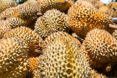 Group of durian in the market. Close up of peeled durian. Stock Photo