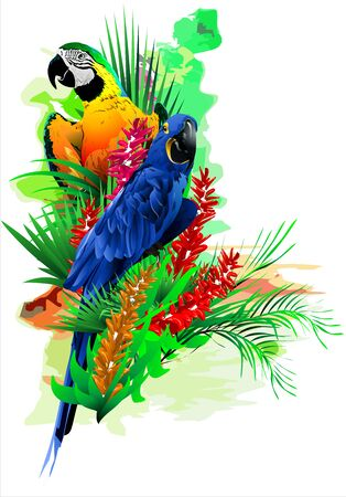 Colorful illustration with parrots in colors on an abstract background. Stock Photo
