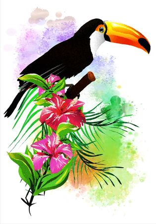 Toucan with flowers on an abstract background. It is executed in a watercolor style. Isolated on a white background. Stok Fotoğraf