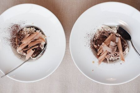 two ice cream with chocolate chips and cocoa topping. close-up. desserts concept