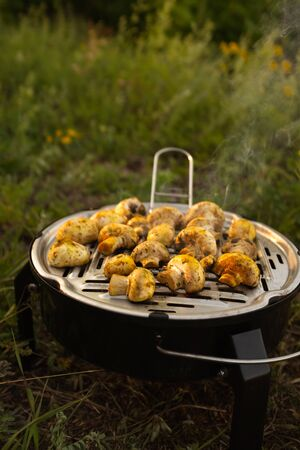 champignons grilled close-up. Picnic. Camping. vegetarianism concept