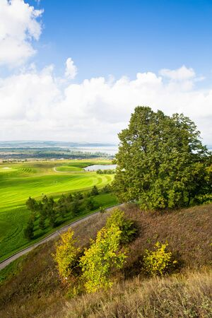 Russian open spaces. Beautiful nature. golf course. summer landscape. top view