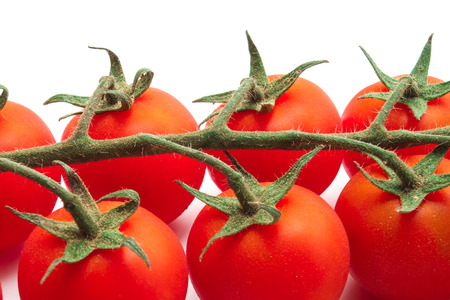 unwashed red cherry tomatoes with green branch Stock Photo