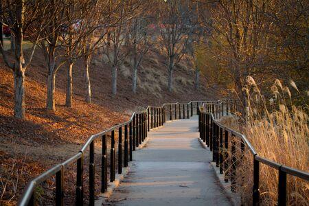 columbus: pathway in Columbus Georgia