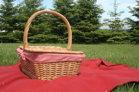 Blanket and basket photo